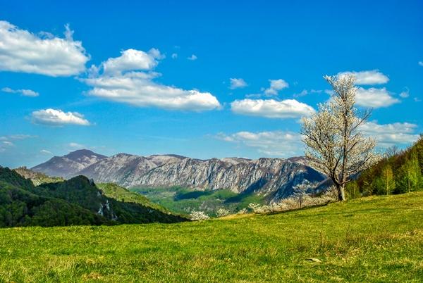 Primăvara în Munții Cernei și Mehedinți